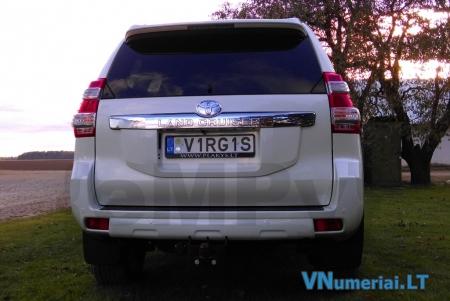 V1RG1S
