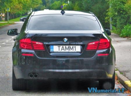 TAMM1